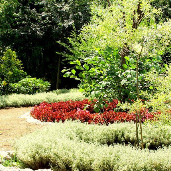 1-giardino-dei-profumi_small