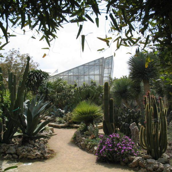 Vialetti del giardino Roccioso