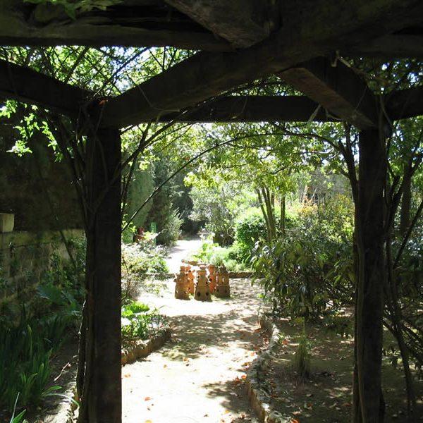 Il Giardino Dei Semplici La Cutura Giardino Botanico